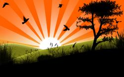 Vector Graphics Nature Wallpapers and photos