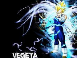 Vegeta - prince-vegeta Wallpaper