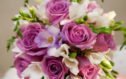 Roses Bouquet
