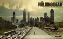 HD Wallpaper | Background ID:240942. 1440x900 TV Show The Walking Dead
