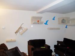 ... Fine Wall Furniture On Furniture With Wall Furniture After We Installed It On 9 30 08 ...