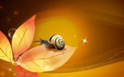 Computers Snail Desktop Vector Wallpapers Hd Free Xpx 1920x1200px