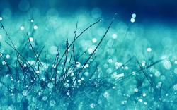 ... water_drop_with_green_wallpaper_hd Water-Wallpaper-HD-Desktop ...