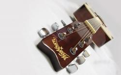 Washburn Acoustic Guitar Music