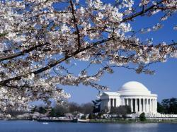Washington DC Monuments 21 HD Image