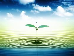 View And Download Water Drop Wallpaper ...