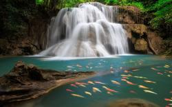 waterfall-hd-wallpapers ...