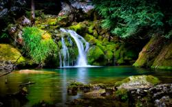 Forest Waterfall Wallpaper 23712