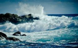 Wave Wallpaper