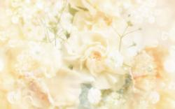 DOWNLOAD WALLPAPER Wedding Background - FULL SIZE ...