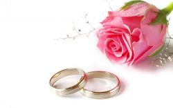 Wedding Background 18432 1920x1200 px