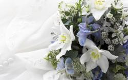 This National Garden Month, put your green thumb to work to add your own personal, floral touch to upcoming 2013 weddings. Whether it's your own wedding or ...