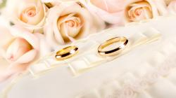 Other Resolution: Surprising Twins Couple Rings Gold Glitter Pink Fabric Rose Flower Wedding Hd Wallpapers