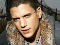 List of Wallpapers Wentworth Miller photo