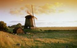 Windmill Wallpaper