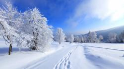 Free Winter Nature Wallpaper, Free Winter Pc Wallpaper