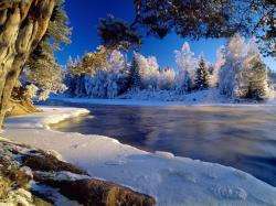 Amazing Winter Backgrounds