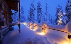 Winter house lights