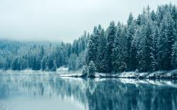 Winter Lake