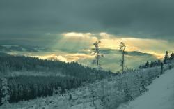 Scenery Pics Winter landscape