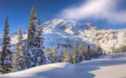 """Download the following Winter Mountain Wallpaper 29604 by clicking the orange button positioned underneath the """"Download Wallpaper"""" section."""