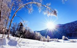 Winter, snow, mountains and trees, white scenery, dazzling sunshine wallpaper 1920x1200.