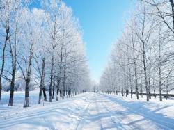 ... Winter #04 Image ...
