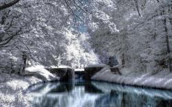 Beautiful Winter Scenery Hd Wallpapers