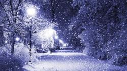 First Winter Sn