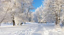 Wallpaper Snow Wallpaper Backgrounds: Wallpapers for Gt Winter Snow Desktop Background 1920x1080px