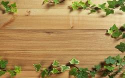 Wood plant