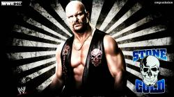 These wallpapers are high definition and available in wide range of sizes and resolutions. Download WWE HD Wallpapers absolutely free for your Pc, ...