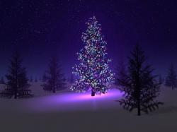 Cool Xmas Wallpaper: Fascinating Christmas Tree Desktop Wallpapers 1024x768px