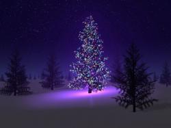 Cool Xmas Wallpaper: Fascinating Christmas Tree Desktop Wallpapers 1024x768px