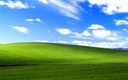 Windows XP Bliss