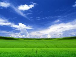 Large Windows XP Wallpapers ...