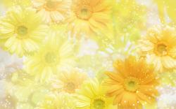 Wallpapers for Gt Yellow Flower Background Wedding 1920x1200px