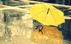 Yellow umbrella rain
