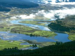 Yellowstone National Park View 56098 Hi-Resolution
