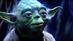 Yoda Mester aranyköpései