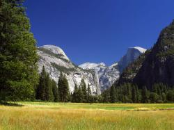 A view of Yosemite