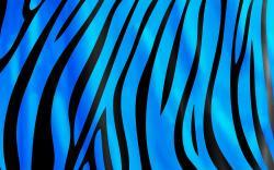 Glamorous Blue Zebra Print Hd Wallpaper