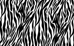 Neon pink zebr Neon Pink Zebra Print Wallpapers