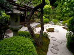 Backgrounds for Gt Zen Garden Wallpaper Widescreen