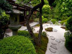 Backgrounds for Gt Zen Garden Wallpaper Widescreen